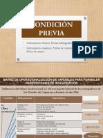 Matrices Operac y Consistencia APA