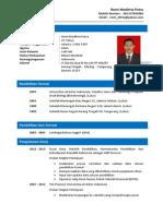 Romi Meditria Putra - CV