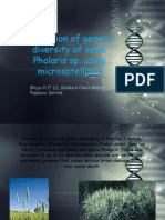 Evaluation of Genetic Diversity of Some Phalaris Sp