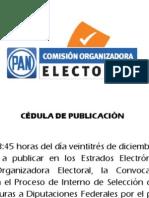 Convocatoria Proceso de Interno de Selección de fórmulas de Candidaturas a Diputaciones Federales