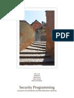 Security Programming Report