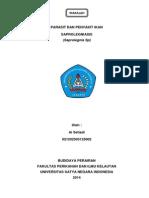 Saprolegnia SP Makalah