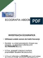 Ecografia abdominala prezentare