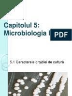 Microbiologia Berii