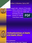 Pathophysiology of Septic & Septic Shock, Dr Christian a Johannes SpAn