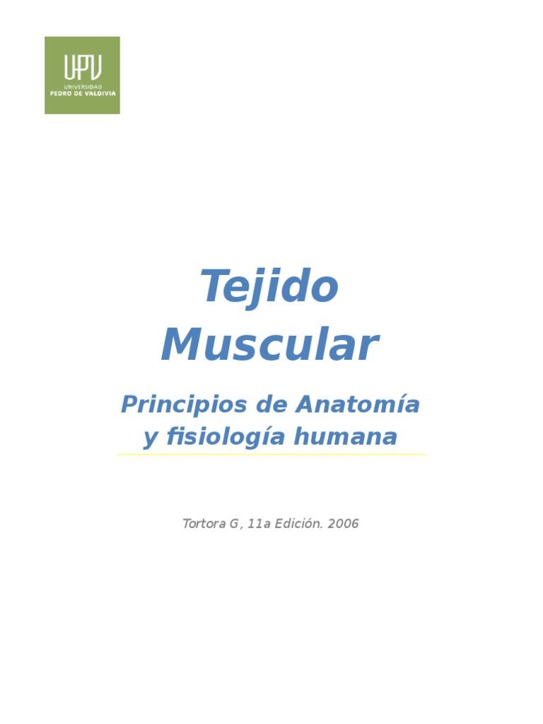Trabajo Resumen Capitulo Tejido Muscular_ Libro de Principios de ...