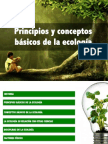 principiosbasicosdelaecologia-131216154549-phpapp02.pdf