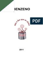 Prevenção Ao Benzeno