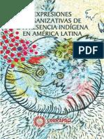 Expresiones organizativas de la presencia indígena en América Latina