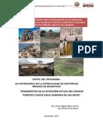 DIAG RIESGOS 24 nov 2012 enviado DGPI.pdf