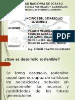 Se Desarrollo Sostenible