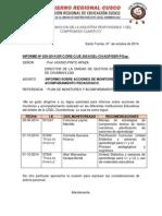 Informe Plinio