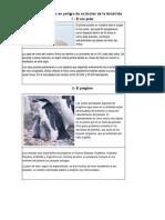 Especies en peligro de extinción de la Antártida.docx