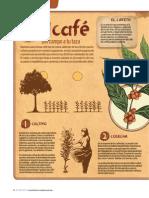 64 65RC424 Infografia Cafe1