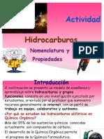 Actividad de Nomenclatura de Hidrocarburos y Grupos Funcionales