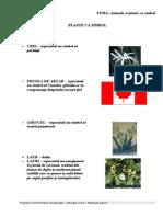 0 3 Materiale Suport Civica Primar