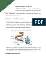 Microsoft Word Sistem Pencernaan Pada Hewan Dan3
