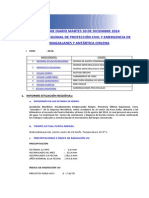 Informe Diario Onemi Magallanes 30.12.2014