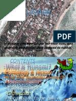 Tsunami 2007