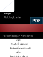 Fisiologi Janin