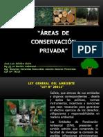 Áreas de Conservación de Huanuco