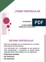 Exposicin Sistema Ventricular