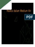 Mg13b DRA-Reaksi Dlm Medium Air