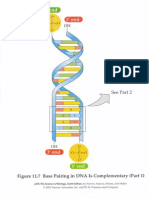 Micro 260 DNA Synthesis Overlays