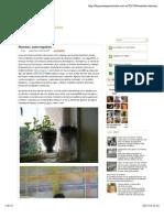 Macetas autorregables ~ Ecoexperimentos
