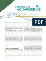 Acua Porinas 2012