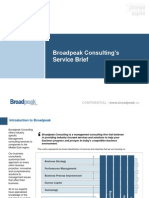 Broadpeak Consulting - Services Brief
