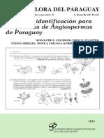 Claves de identificación para las familias de Angiospermas de Paraguay