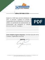 Acuerdo de la aprobacion de la Comision Organizadora Electoral para el Proceso Federal 2014-2015
