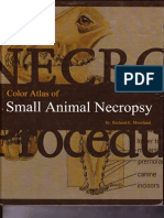 242956829 Color Atlas of Small Animal Necropsy