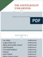 RESEPTOR_ASETILKOLIN_MUSKARINIK