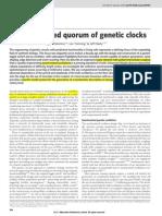A Synchronized Quorum of Genetic Clocks