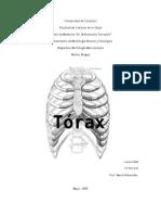 Anatomía ósea del Tórax