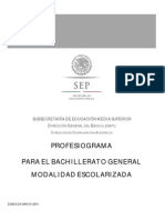 PROFESIOGRAMA DGB