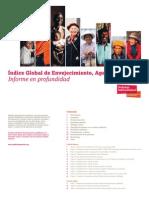 indice global de envejecimiento agewatch 2014