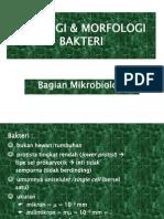 SITOLOGI & MORFOLOGI BAKTERI