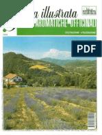 Guida Illustrata Vita in Campagna Piante Aromatiche e Officinali