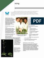 Gene Silencing Information Sheet