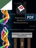Las 3 Ps del Noviazgo (Presentación 3).pdf