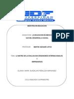 La Matriz de La Evaluacion de Los Organismos Internacionales y Empresarios