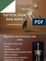 Anatomia Do Sistema Ósseo - Aves