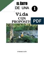 manualexitodeunavidaconproposito-110921121931-phpapp02