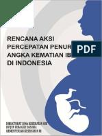 RAN-PP-AKI-2013-2015