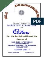 Marketing Projec- Preeti Soni1