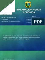 1 y 2. Inflamacion Aguda y Crónica