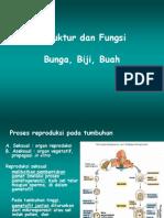 18-bunga-biji-buah.pdf